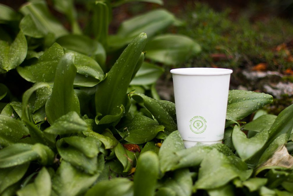 Tree Free Global - Bio Cups