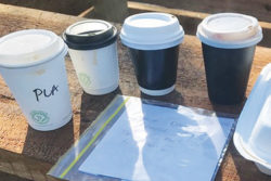 Most compostable Takeaway cup on the market