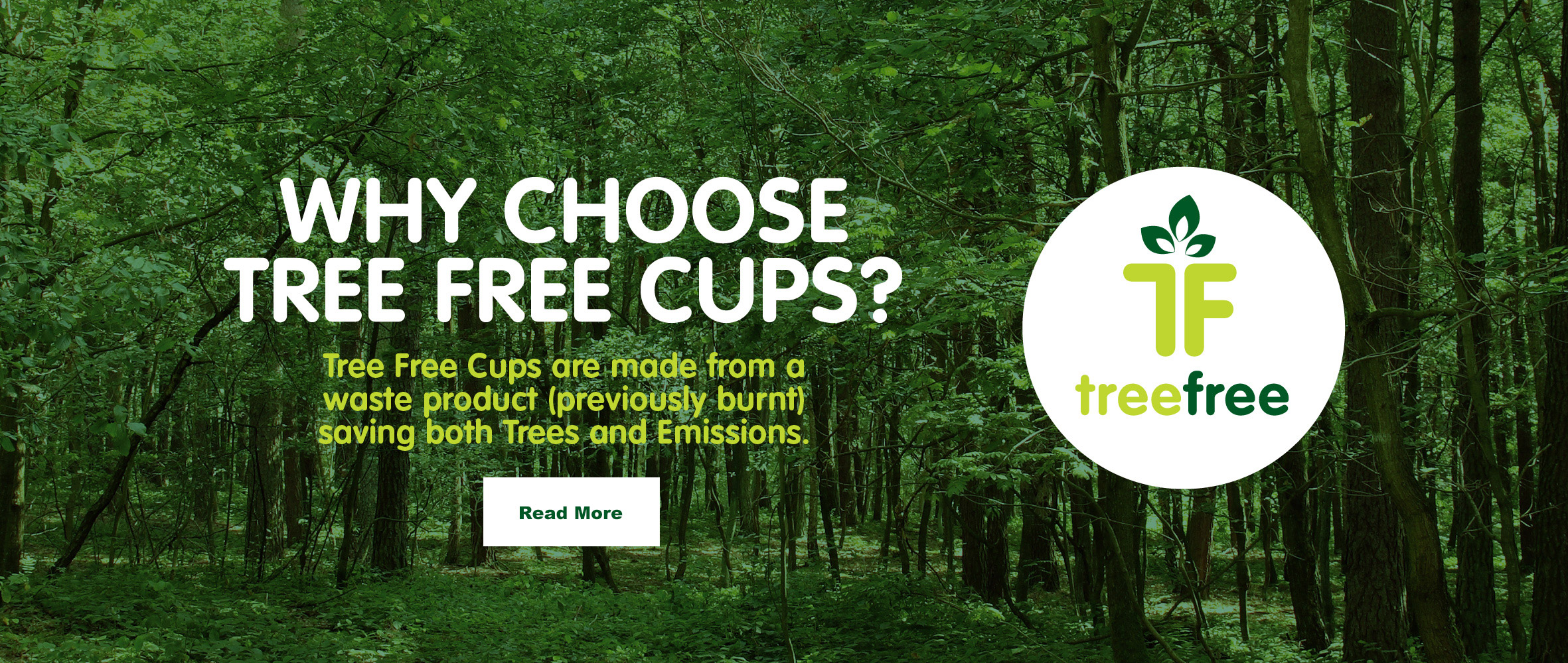 Why choose tree free cups?