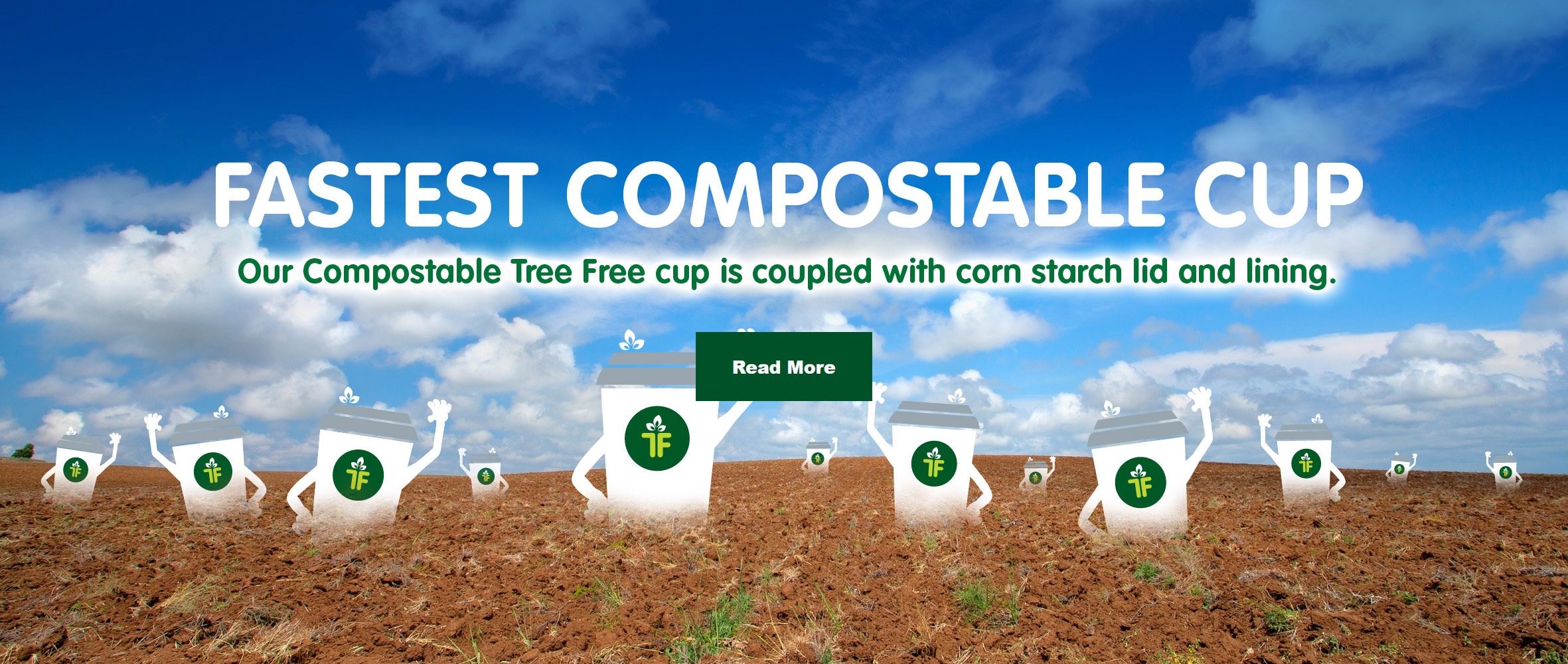 We placed 2 of our Bagasse cups and 2 paper cups in a home compost