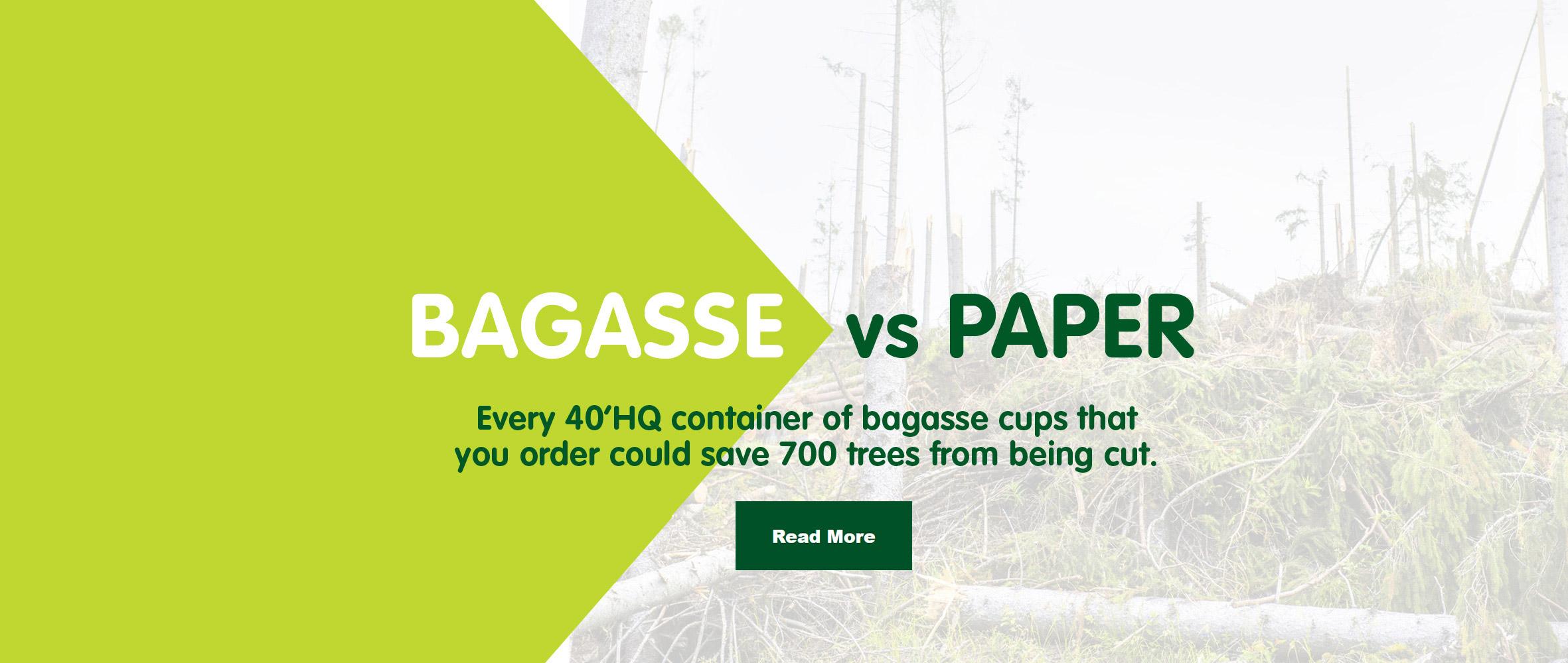 Bagasse VS paper